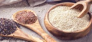 Youssoufia & Rehamna : soutien consistant aux producteurs du Quinoa