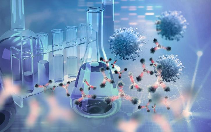 Covid-19 : Le candidat médicament XAV-19 est efficace contre les variants
