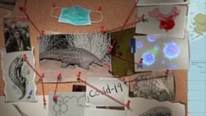 Regain de crédibilité pour la Chine : le virus Covid 19 ne provient pas de la fuite du labo
