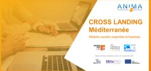 ANIMA et Provence Promotion veulent attirer des start-ups étrangères à fort potentiel de développement