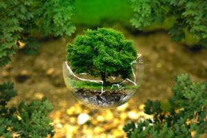 """En live : Suivez la """"Journée internationale de la terre"""" 2021"""