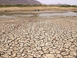 """""""Intégrer et financer la résilience climatique pour la reprise verte en Afrique"""""""