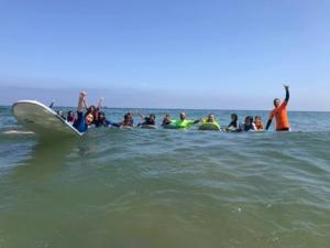 Le surf des plages cet été : un marché florissant