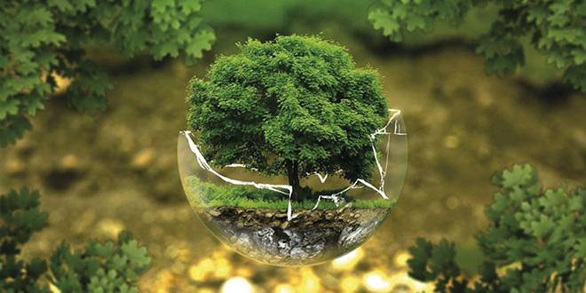 "Lancement du concours national ""Green Start-up"""