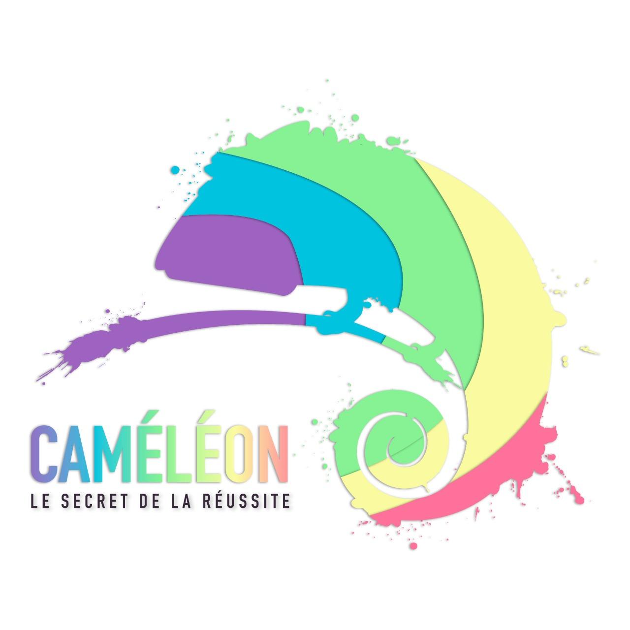 CAMELEON Maroc pour la collecte des données de marché