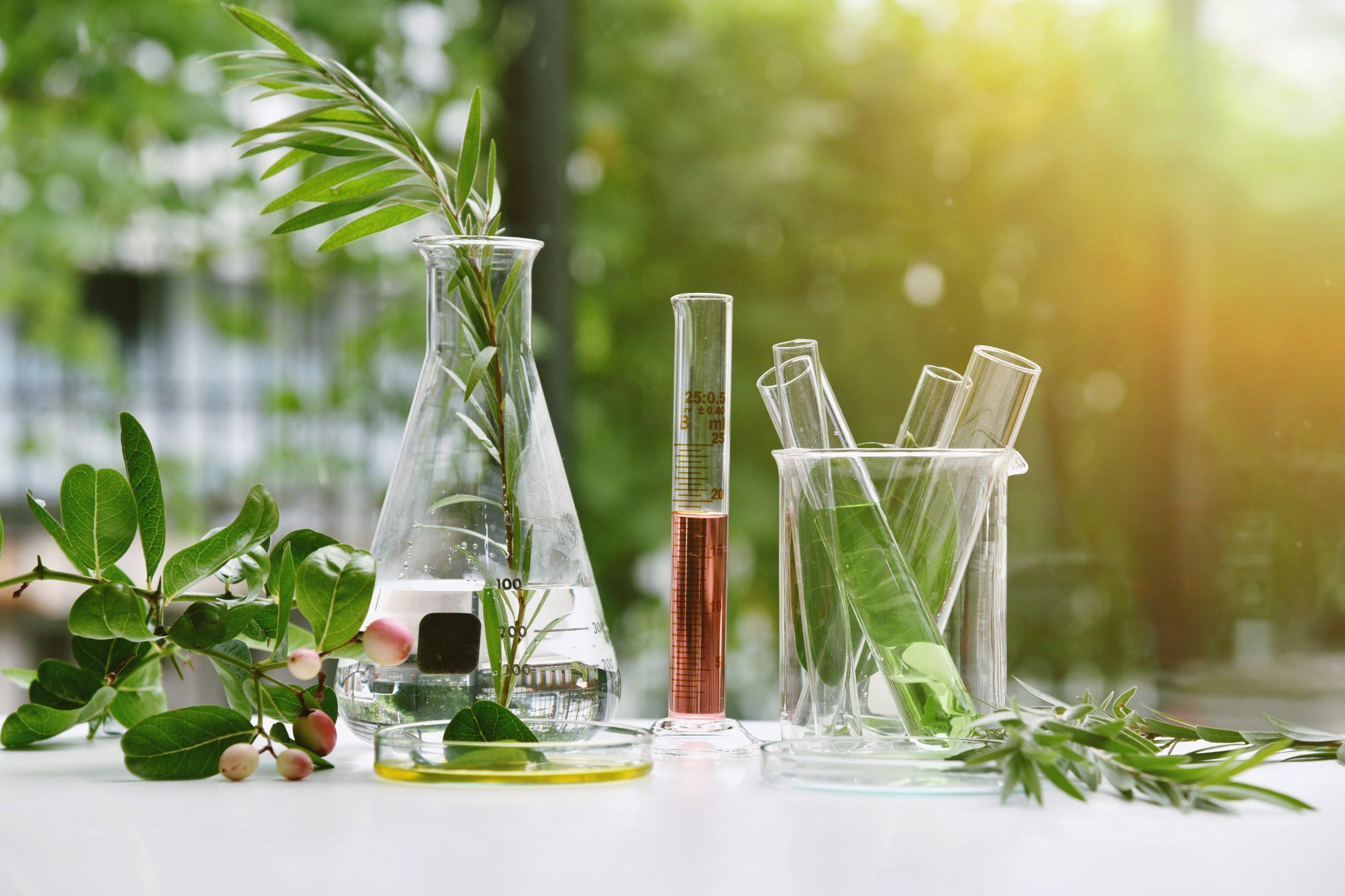 Pourquoi transiter aux cosmétiques durables et écoresponsables?