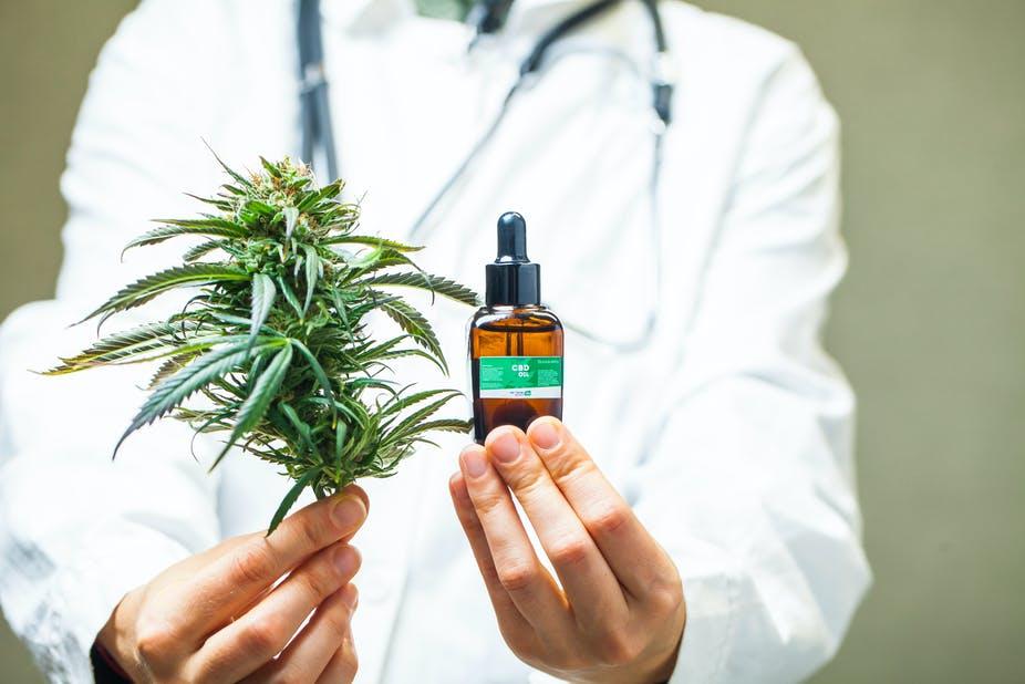 Il y a cannabis et cannabis