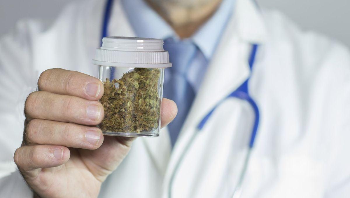Fès: L'USMBA et Laprophan s'associent dans la recherche sur le cannabis médical