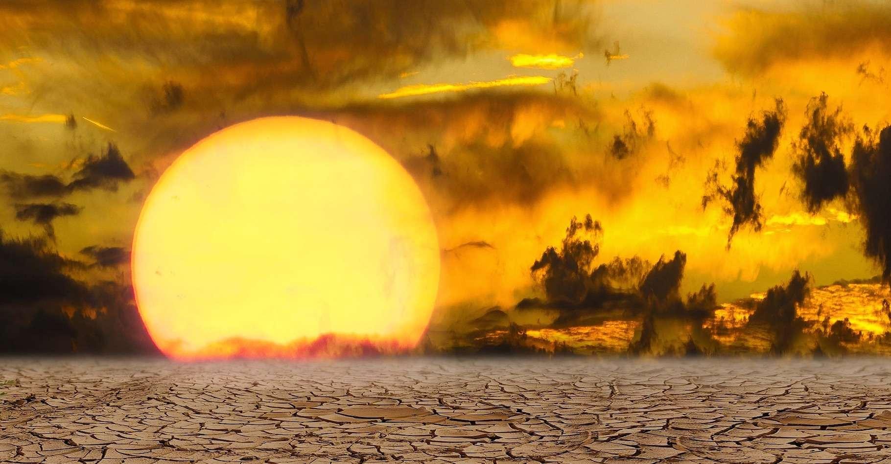 Climat : 2020 une année des plus sèches depuis 1981