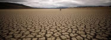 Sommet virtuel sur l'investissement dans la résilience climatique en Afrique