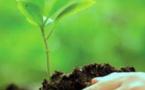 Midelt : une initiative pour accompagner les jeunes dans le domaine de l'entreprenariat vert