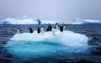 La fonte des glaces s'est fortement accélérée en 30 ans