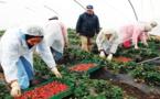 L'ANAPEC et l'OIM débattent du cas des travailleuses saisonnières en Espagne