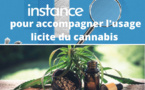 Une instance pour accompagner les usages licites du cannabis