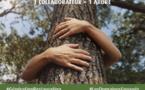 Les Domaines Agricoles : Plantation de 2500 arbres en un an