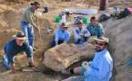 Une nouvelle espèce de dinosaure découverte en Australie
