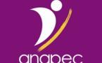 Les contrats d'insertion professionnelle (ANAPEC) : duperie ou opportunité ?