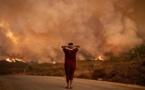 Algérie : La politique de la terre brulée