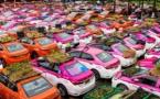 Bangkok : Des taxis font pousser des légumes sur leur toit