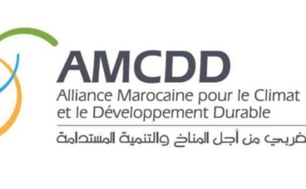 Le nouveau modèle de développement : l'AMCDD appelle à un plan global de réformes