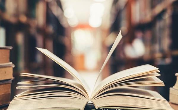 De qui la littérature est elle l'apanage ?