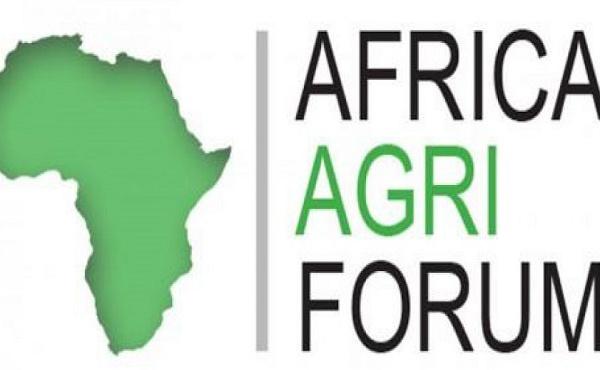 Soutenir les entreprises agricoles en Afrique