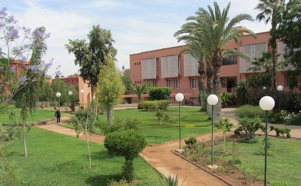 """Marrakech : l'Institut français lance """"Galerie à l'air libre"""""""