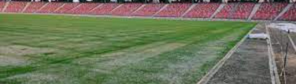Le Maroc , responsable du mauvais état des pelouses dans les stades d'Algérie !?